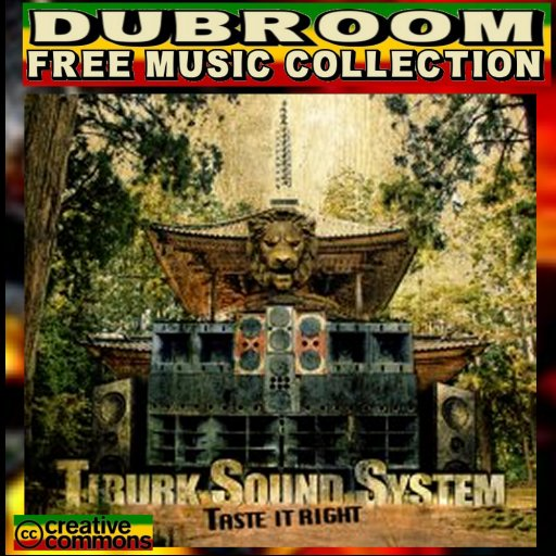 TIBURK SOUND SYSTEM - TASTE IT RIGHT